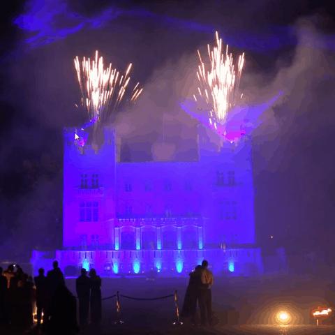 Hochzeitsshow-Multimediashow-Feuerwerk-Lasershow (7)