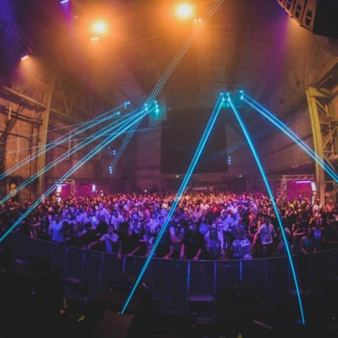 Pioneer_DJ_Alpha_Laserbeams_Crowd