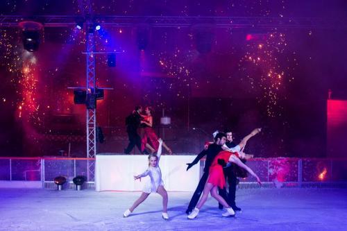 Bühnenshows-von-Les-Lionnes-1024x683