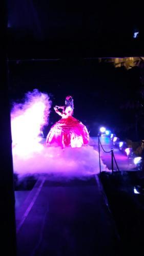 Opernsängerin im Nebel